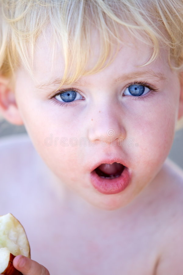 Young girl or toddler eating apple stock photography