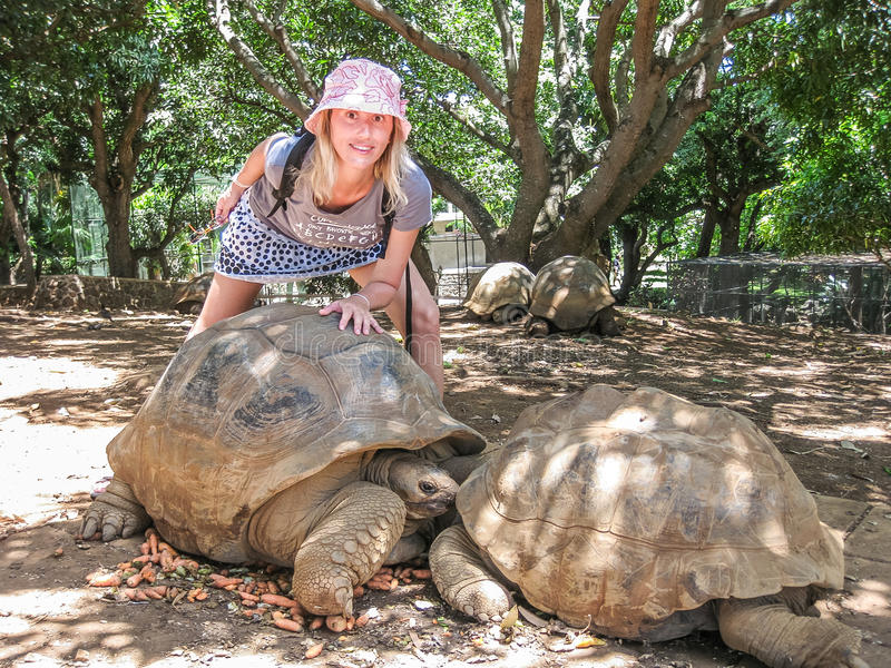Download Woman and big turtles stock image. Image of animals, smile - 41155233
