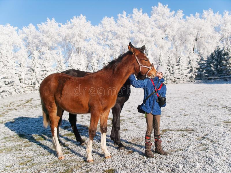 Portrait of girl with foals on frosty pasture in sunny day royalty free stock photography