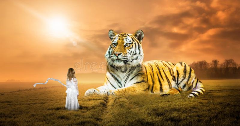 Surreal Fantasy Dream, Tiger, Nature, Girl, Imagination. A young girl uses her imagination to be in nature with a large wildlife tiger or big cat. Abstract royalty free stock image