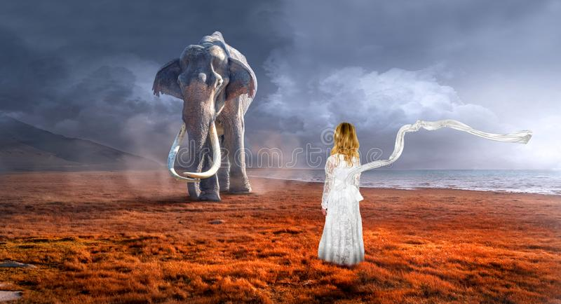 Surreal Elephant, Wildlife, Imagination, Girl. A young girl uses her imagination to pretend being with nature and wildlife. An elephant walks in a surreal stock photos