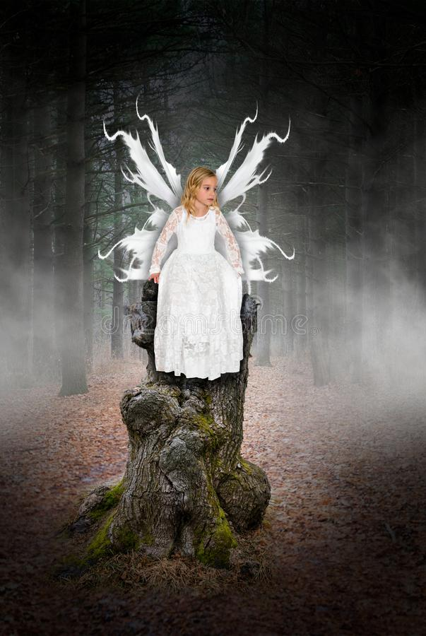 Angel, Fairy, Young Girl, Imagination, Play, Pretend stock photo