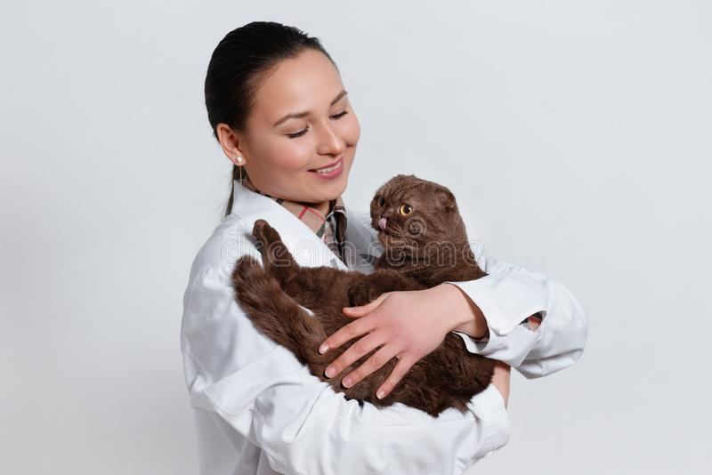 Young girl veterinarian in working clothes with a funny cat in her arms. On light background royalty free stock photography