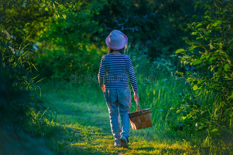 Young girl walking on a path through green woods carrying a basket stock photography