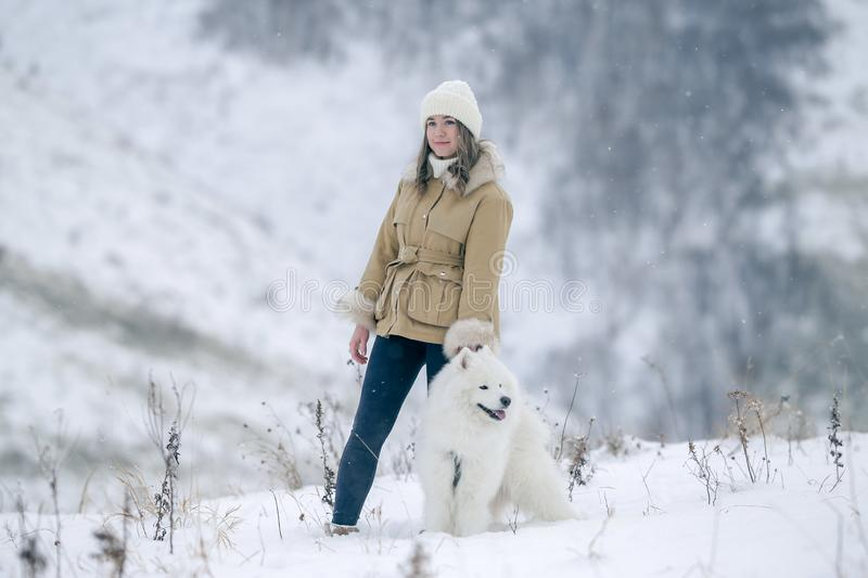 A young girl walks in winter with a white Samoyed dog in a snowy meadow in the forest royalty free stock photo