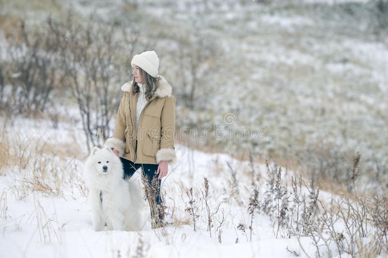 A young girl walks in winter with a white Samoyed dog in a snowy meadow in the forest royalty free stock images