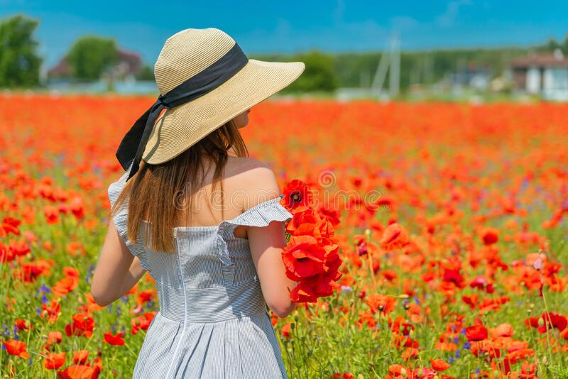 Young girl in the white dress and hat from tha back with a poppy flowers in the hand. royalty free stock images