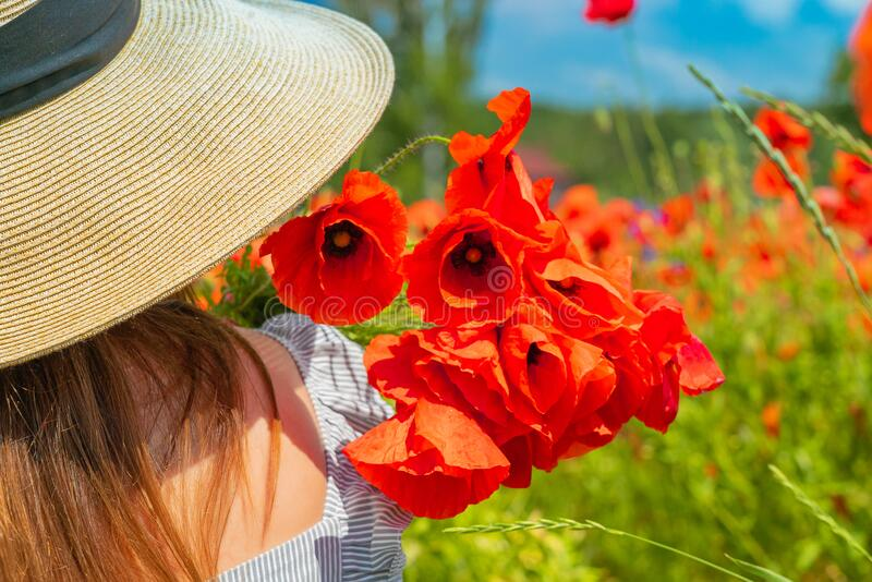 Young girl in the white dress and hat from tha back with a poppy flowers in the hand. royalty free stock photos