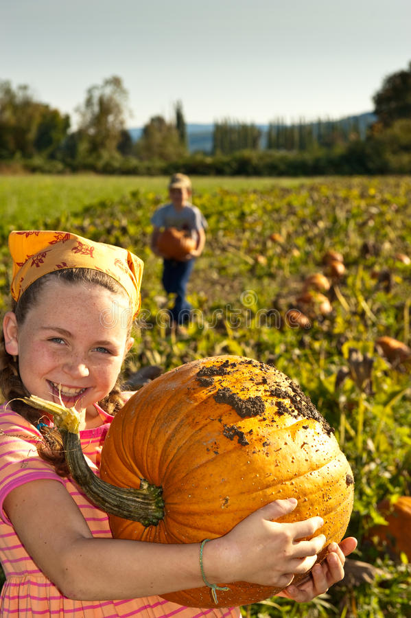Free Young Girl With Large Pumpkin, In Field Stock Photo - 11208920