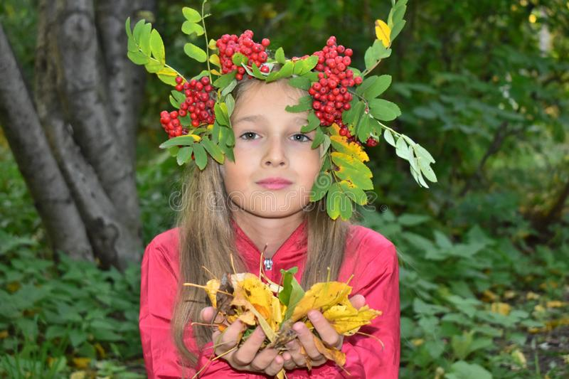 Young girl with a wreath of rowan stock image