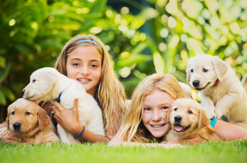 Young Girls with Baby Puppies royalty free stock photography
