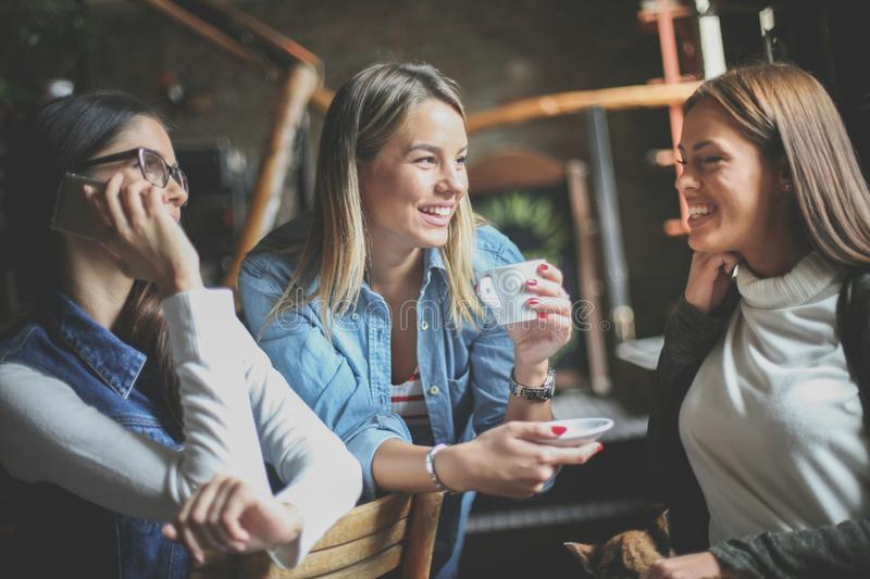 Young girls having fun in cafe. stock images