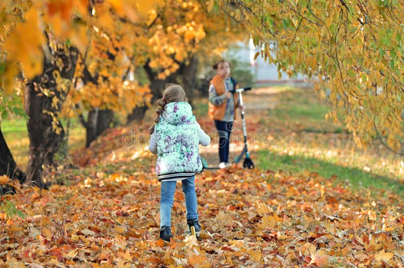 Young girls play outdoors in the autumn season stock photo