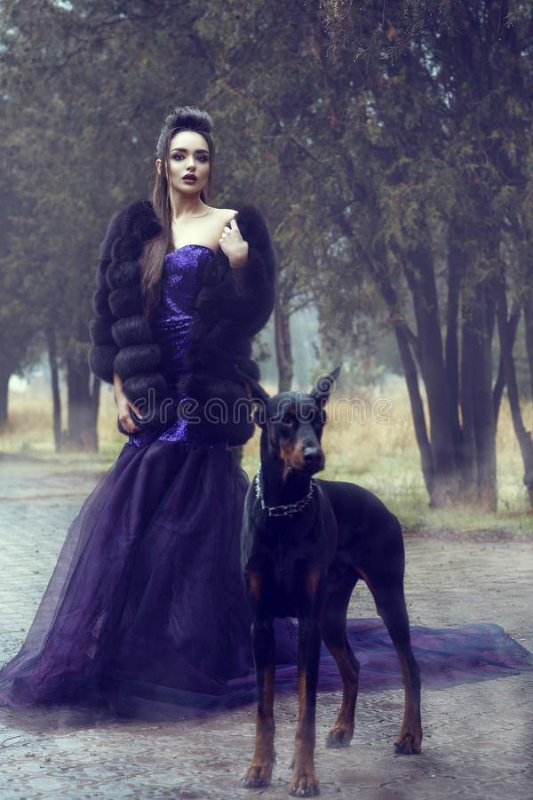 Glam lady in luxurious sequin violet evening gown and fur coat standing on the alley in the park with her Doberman pinscher dog. Young glam beautiful lady stock photography