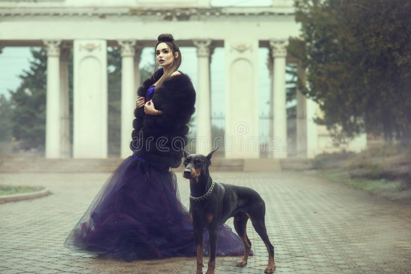 Glam lady wearing luxurious sequin violet evening gown and fur coat standing on the alley in the park with her Doberman pinscher royalty free stock images