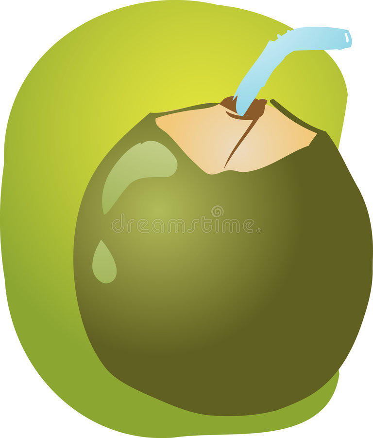 Young green coconut royalty free illustration