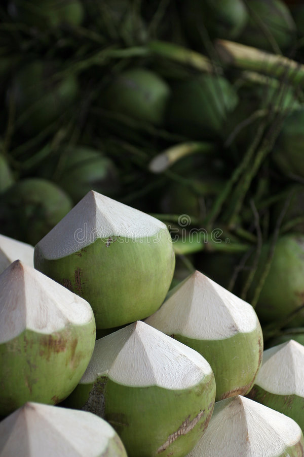 Download Young Green Coconuts stock photo. Image of food, sweetness - 1735506