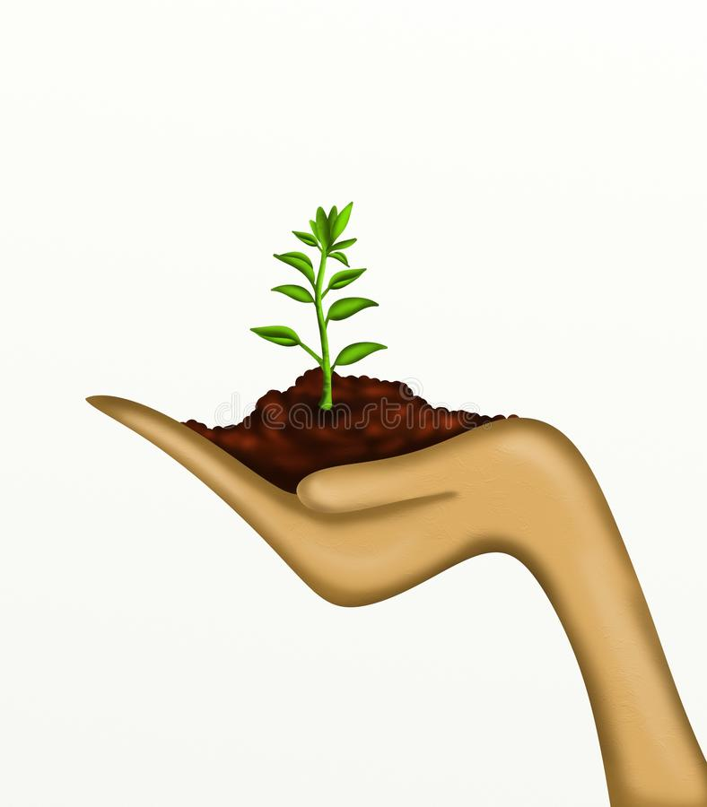 Plant In Hand Stock Photos
