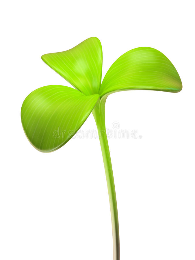 Young green sprout trifoliate stock illustration