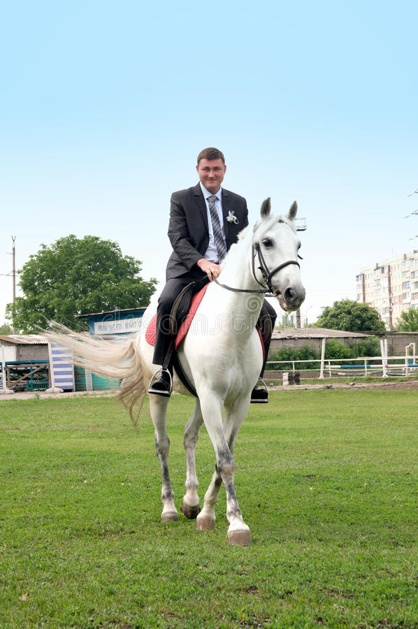 The young groom riding on a white horse royalty free stock images