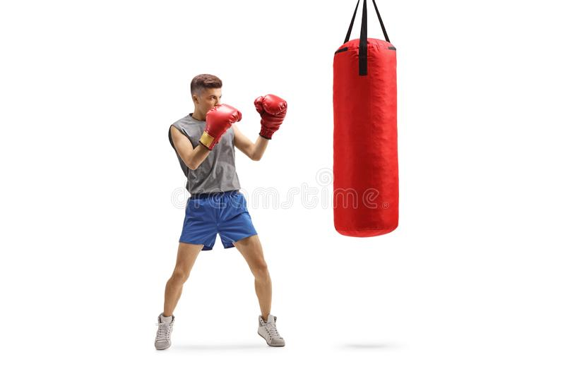 Young guy punching with boxing gloves in a red hanging bag stock images