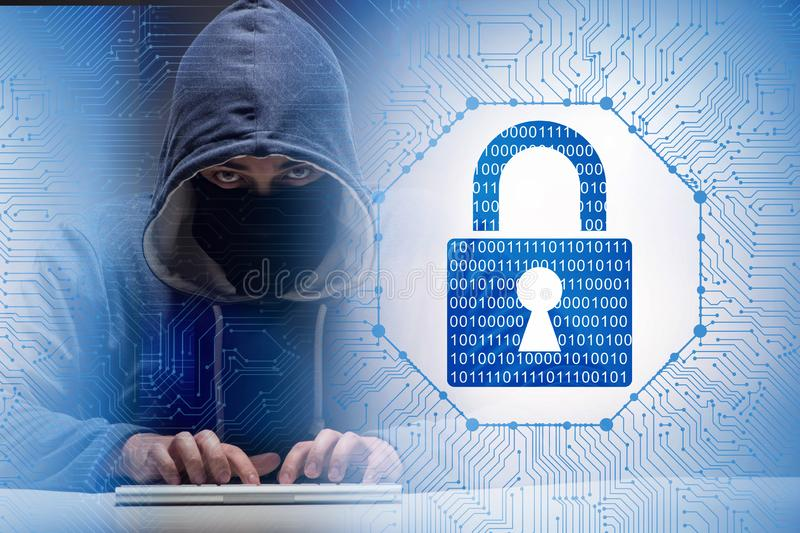 Young hacker in cybersecurty concept stock images
