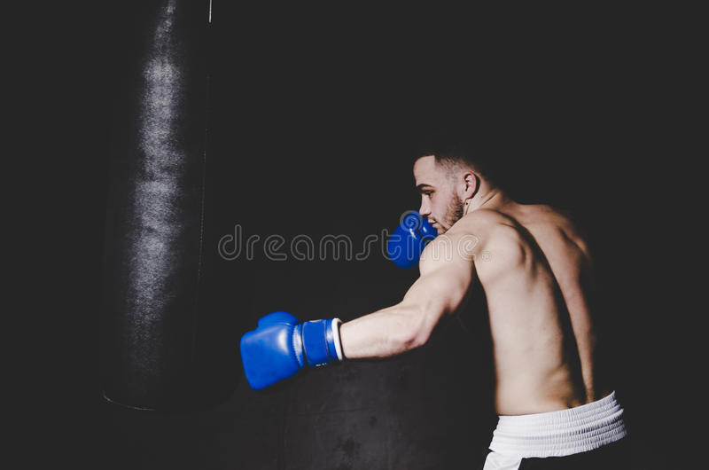 Young handsome boxer in blue boxing gloves boxing royalty free stock photo