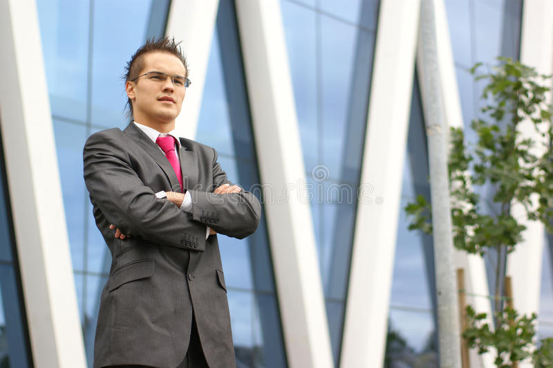 Download A Young And Handsome Businessman In Formal Clothes Royalty Free Stock Photos - Image: 16847608