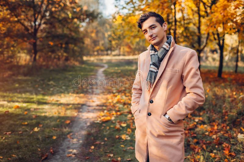 Young handsome businessman walking in autumn forest at sunset. Stylish guy wearing classic clothes and accessories royalty free stock images