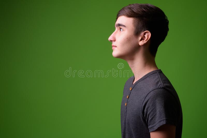Young handsome Iranian teenage boy against green background. Studio shot of young handsome Iranian teenage boy against chroma key with green background royalty free stock photography
