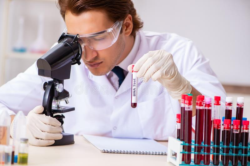 The young handsome lab assistant testing blood samples in hospital. Young handsome lab assistant testing blood samples in hospital stock photos