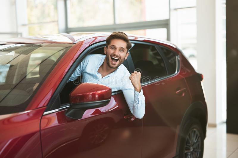 Young handsome man looking for new car in dealership center sticking out the vehicle window royalty free stock image