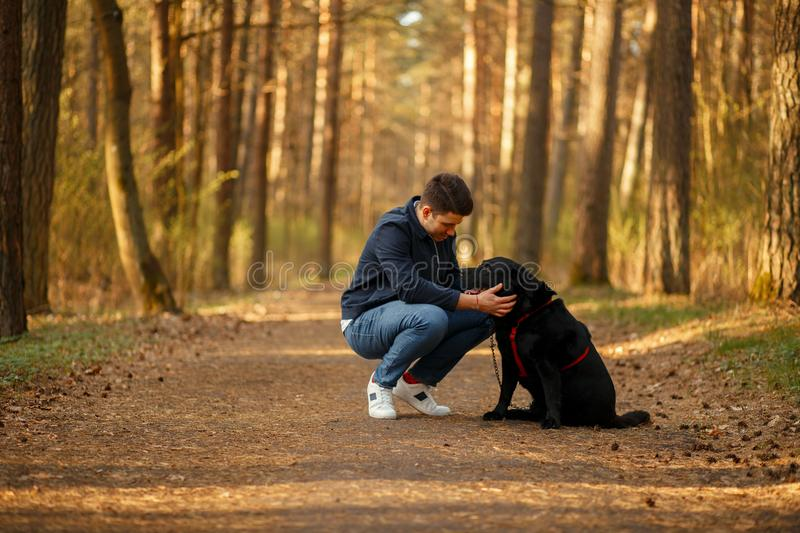 Young handsome man in stylish clothes walking with dog stock photos