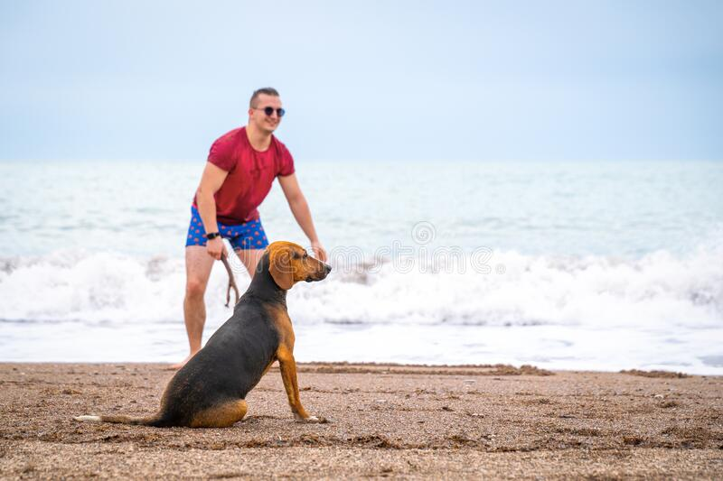 Young handsome man walks with big expressive dog though seashore. Deserted beach, happy pair, positive emotions. Beautiful natural background, sporty casual royalty free stock image