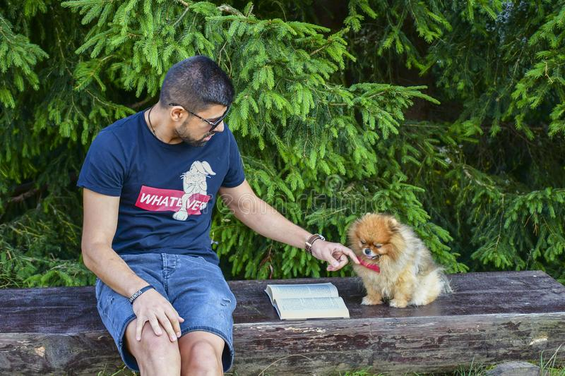 Young handsome smiling man  reading outdoor with a dog stock photography