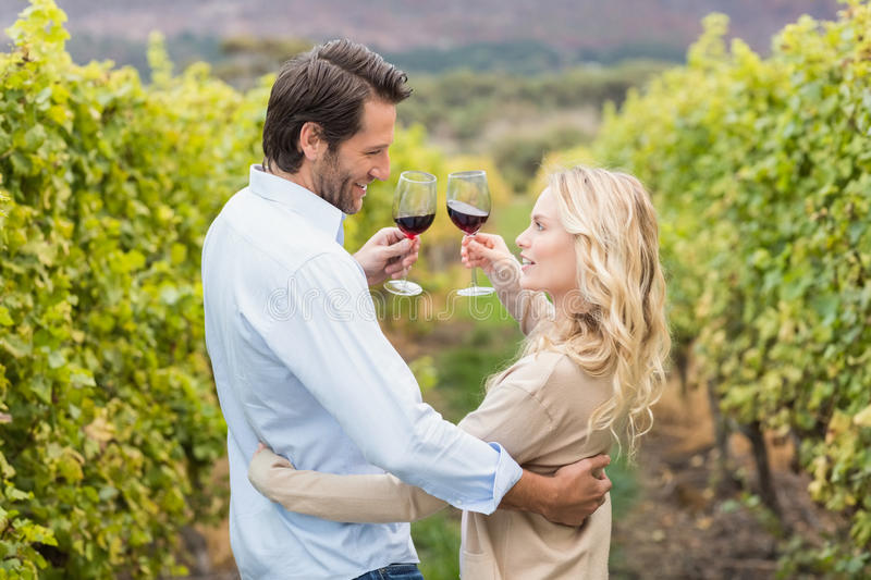 Young happy couple toasting royalty free stock photo