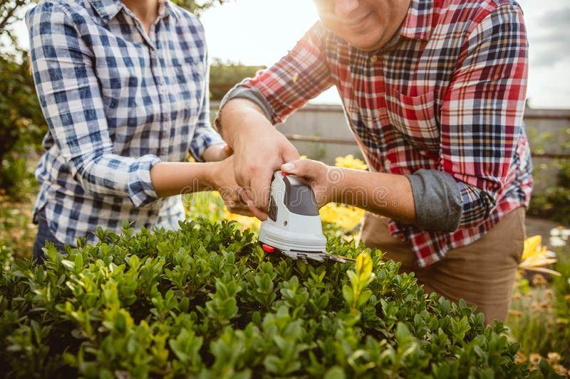 Young and happy farmer`s couple at their garden in sunny day royalty free stock photos