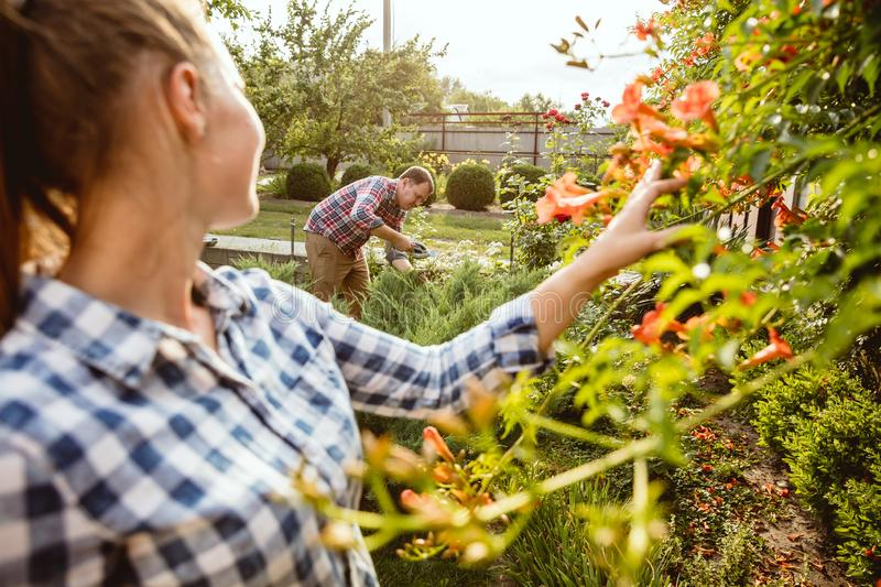 Young and happy farmer`s couple at their garden in sunny day royalty free stock image