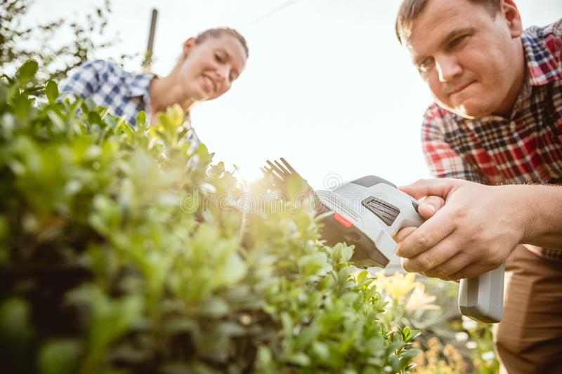 Young and happy farmer`s couple at their garden in sunny day stock photo