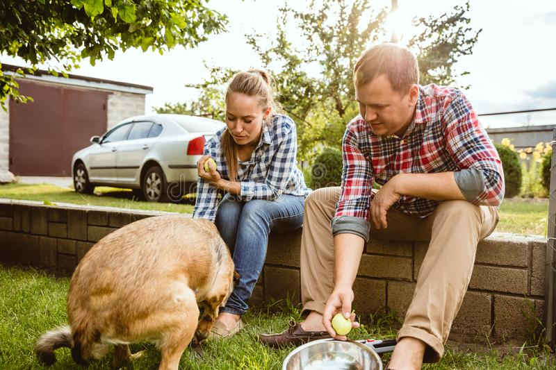Young and happy farmer`s couple at their garden in sunny day stock photography