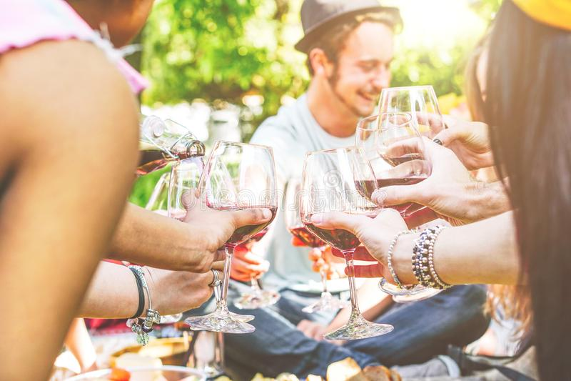 Young happy friends cheering and having fun together in a picnic at backyard - Group of people toasting with red wine glasses stock images