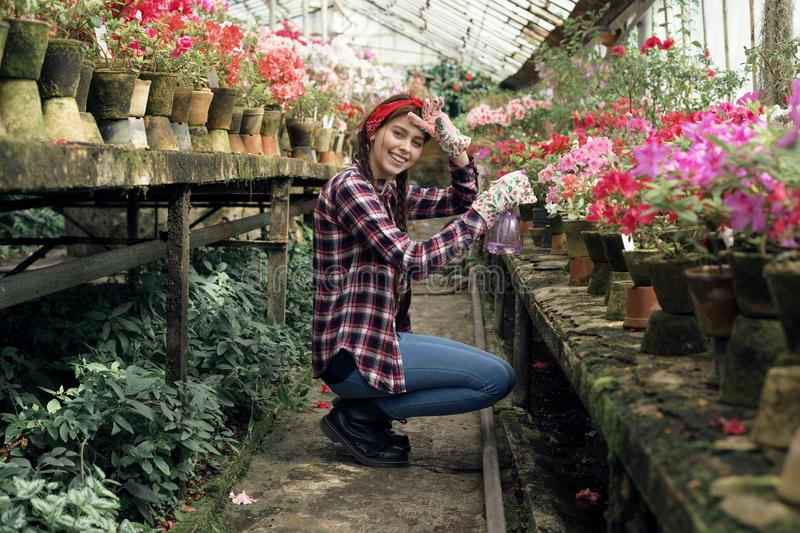 Young happy girl gardener in a plaid shirt with a red headband watering flowers. Young happy girl gardener in a plaid shirt with a red headband watering colorful royalty free stock photo