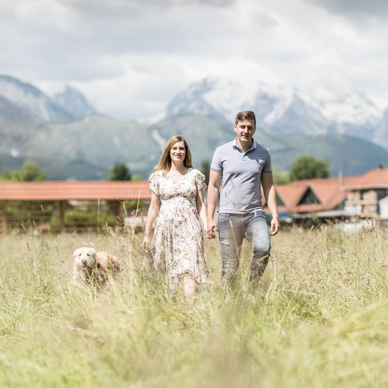 Young happy pregnant couple holding hands walking it`s Golden retriever dog outdoors in meadow. royalty free stock images