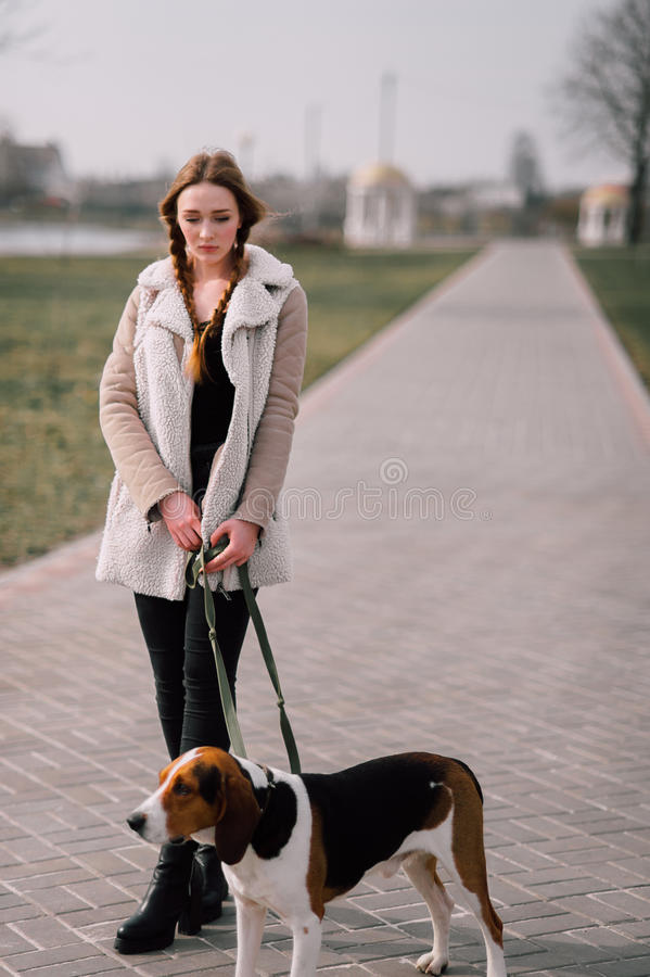 Young hipster girl with her pet estonian hound dog playing and having fun outdoor in the park. Young hipster girl with her pet estonian hound dog playing and stock photography