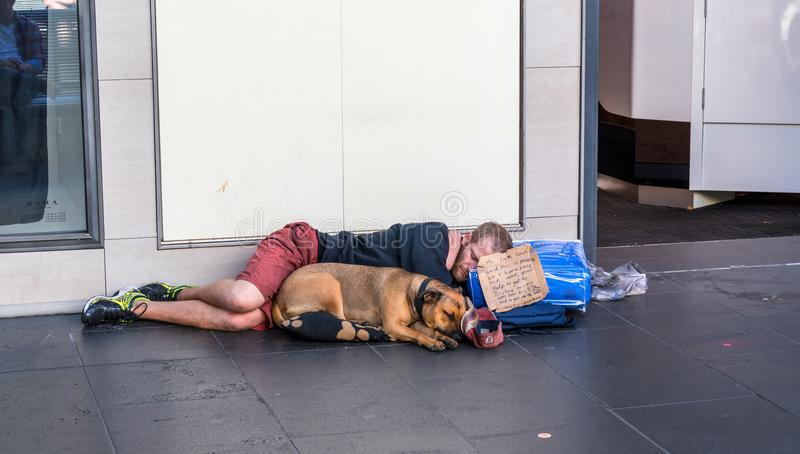 Young homeless man and a dog royalty free stock photo