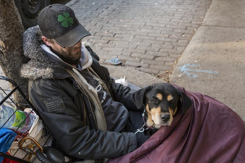 Young homeless man and his dog lying on sidewalk in sleeping bag royalty free stock images