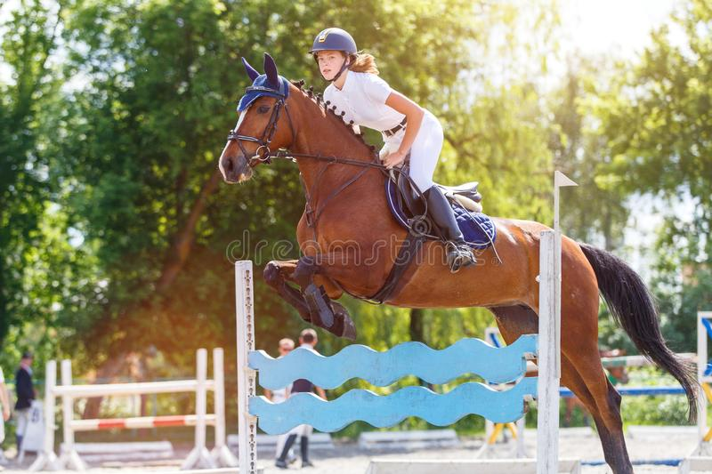 Horse rider woman on show jumping competition. Young horse rider woman jumping over the obstacle on show jumping competition. Equestrian sport background royalty free stock photography