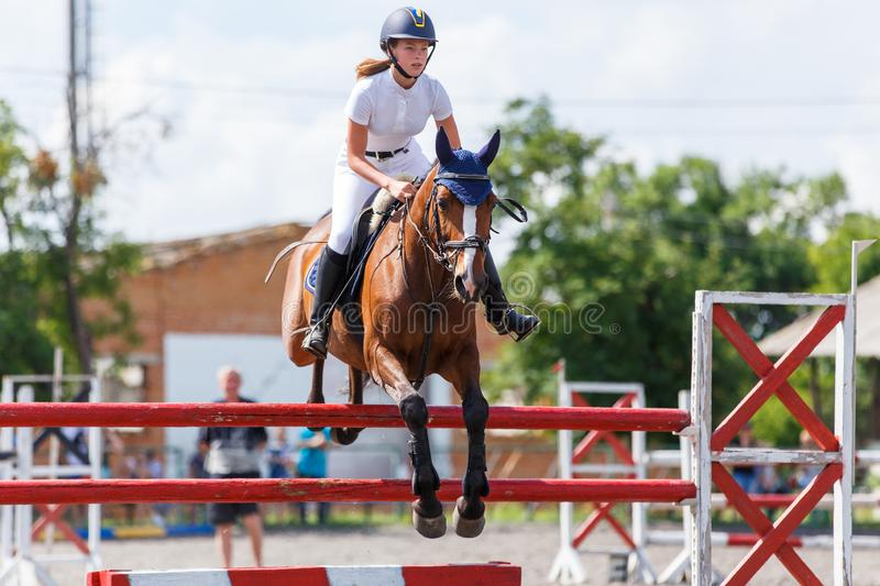 Horse rider woman on show jumping competition. Young horse rider woman jumping over the obstacle on show jumping competition. Equestrian sport background royalty free stock images