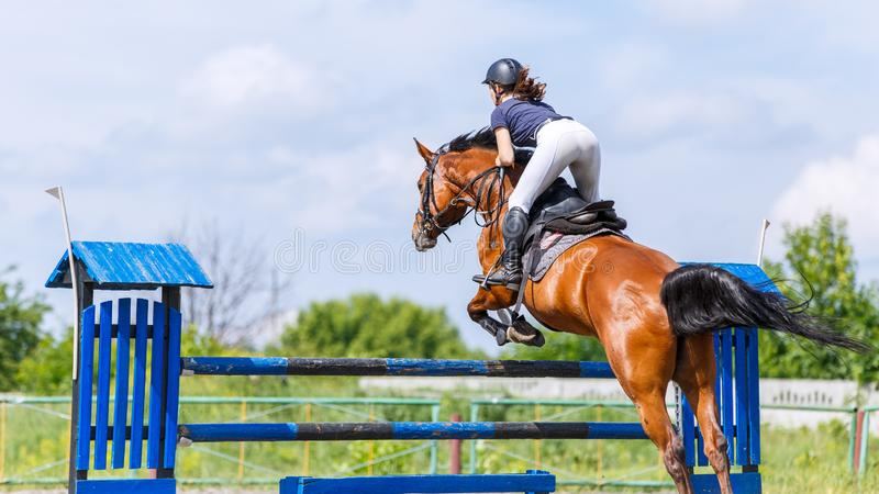 Horse rider woman on show jumping competition. Young horse rider woman jumping over the obstacle on show jumping competition. Equestrian sport background with royalty free stock photos