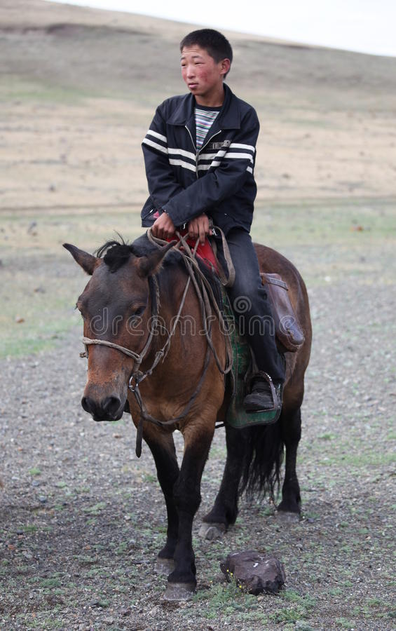 Young Horseman stock image